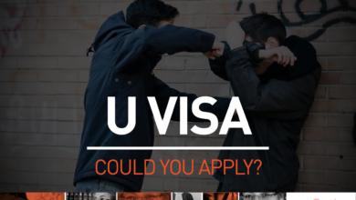 What is a U Visa?