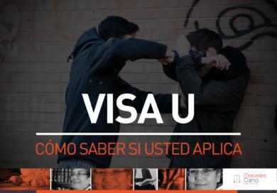 ¿Qué es una visa U?